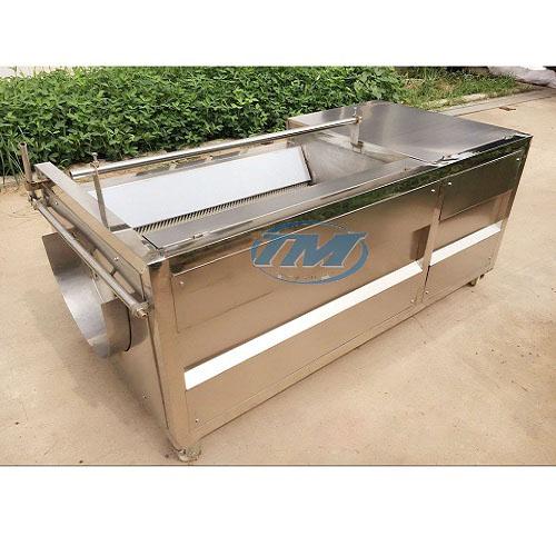 Máy rửa củ gừng, nghệ HS-1200 (TMTP-OB04)