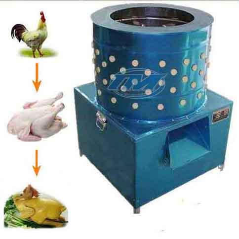 Máy vặt lông gà phi 50 TQ (TMTP-H06)