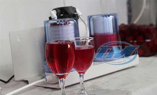 Máy lọc rượu gia đình (TMDC-C09)