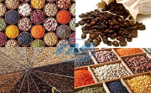 Máy rang hạt DCCY 7-10 dùng điện (Inox) 35 kg/mẻ (TMTP-N16)