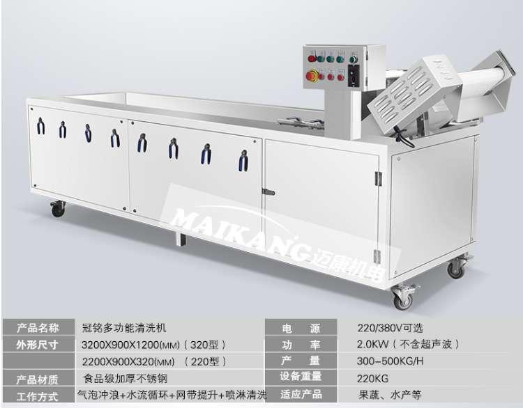 Máy rửa rau củ quả công nghiệp OZON 220 (TMTP-OB08)