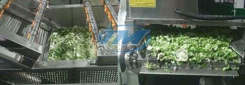 Máy rửa rau củ quả công nghiệp GY-QP-2500 (TMTP-OB07)