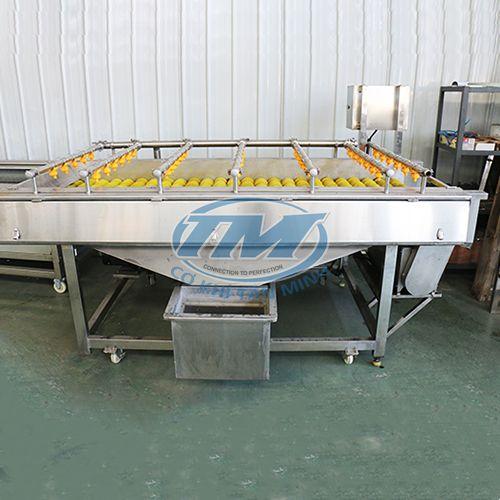 Máy rửa củ quả với trục rửa con lăn có lông chải (TMTP-OB11)